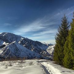 По снежным тропам