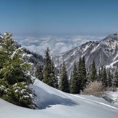 Поднимаясь в горы