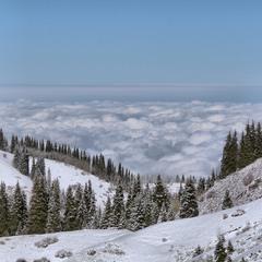 Поднимаясь в горы...