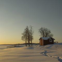 Рассвет на берегу зимнего озера.Швеция.