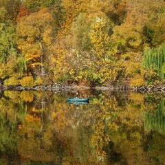 Осінь'19, Україна / Autumn'19, Ukraine