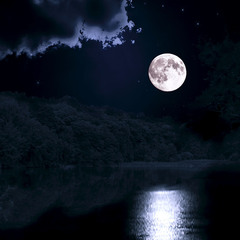 Місяць на лісовому озері