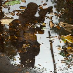 Фотограф і осінь...