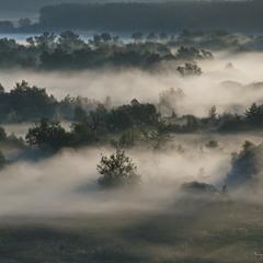 Туман на рассвете в пойме реки Оскол.