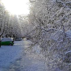 Немного зимы.