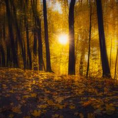 Осенняя акварель