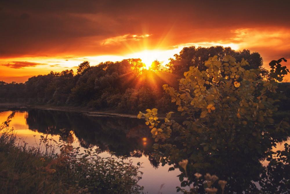 Осенний лес закат фото