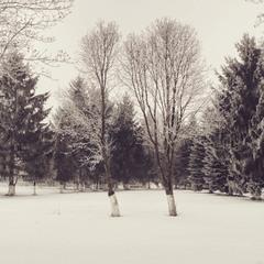 пока зима