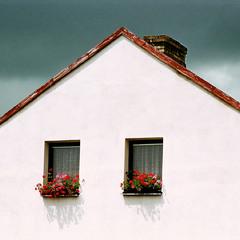 Два окна с цветами