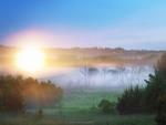Дерманська сон-трава