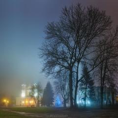 Різдвляна листівка із туманного Житомира