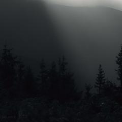 """""""Світло і Тло""""  №8"""
