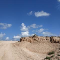 Среди песка