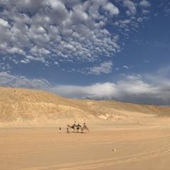 В мире песка