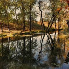Осенние отражения 2