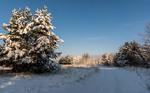 Зимовими дорогами...