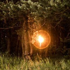 Сонячне колесо...