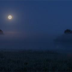 Нічний туман...
