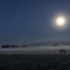"""""""Миколині тумани"""""""