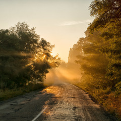 """""""Миколині тумани""""  - По сонячній дорозі..."""