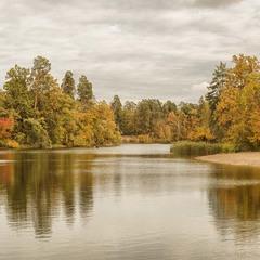 Осінь в Пуща-Водиці...