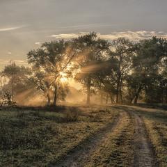"""Дорога в ранок... """"Миколині тумани"""""""