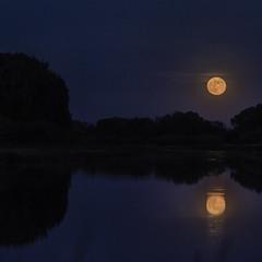 І блідий місяць на ту пору...