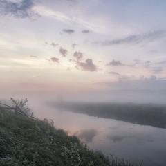 """Біля пасовища... """"Миколині тумани"""""""