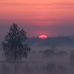 Весняні тумани...