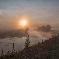 Миколині тумани