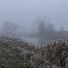 """Туманна осінь... """"Миколині тумани"""""""