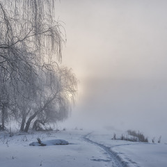 Зима, мороз, туман...