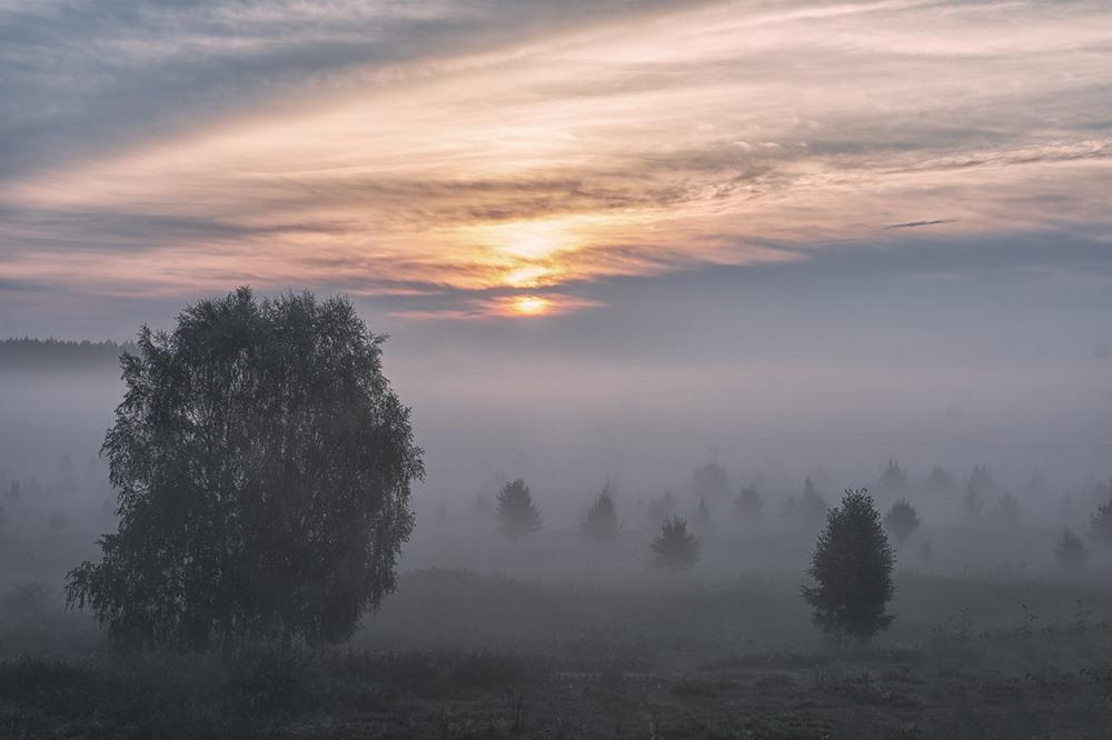Настройки для фотографии тумана