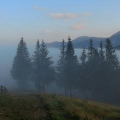 Яблунівські тумани