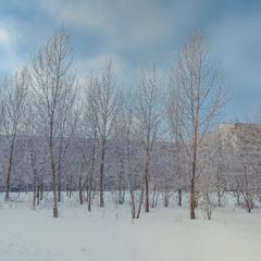 Замерзший город