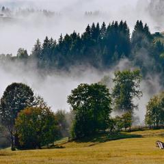 Туманное дыхание осени
