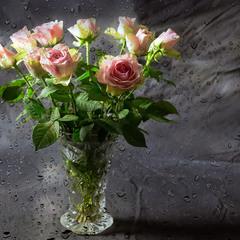 про дождь и розы