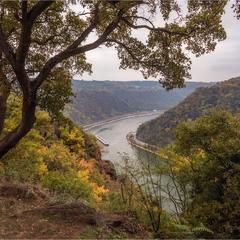 Лореляй. Вид на Рейн