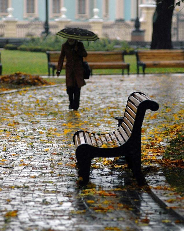 дымом можно картинки осенний сад промокшая скамейка дворник для мамы юбилей