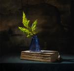 натюрморт з листом клена і книгою