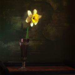 НАТЮРМОРТ с цветком