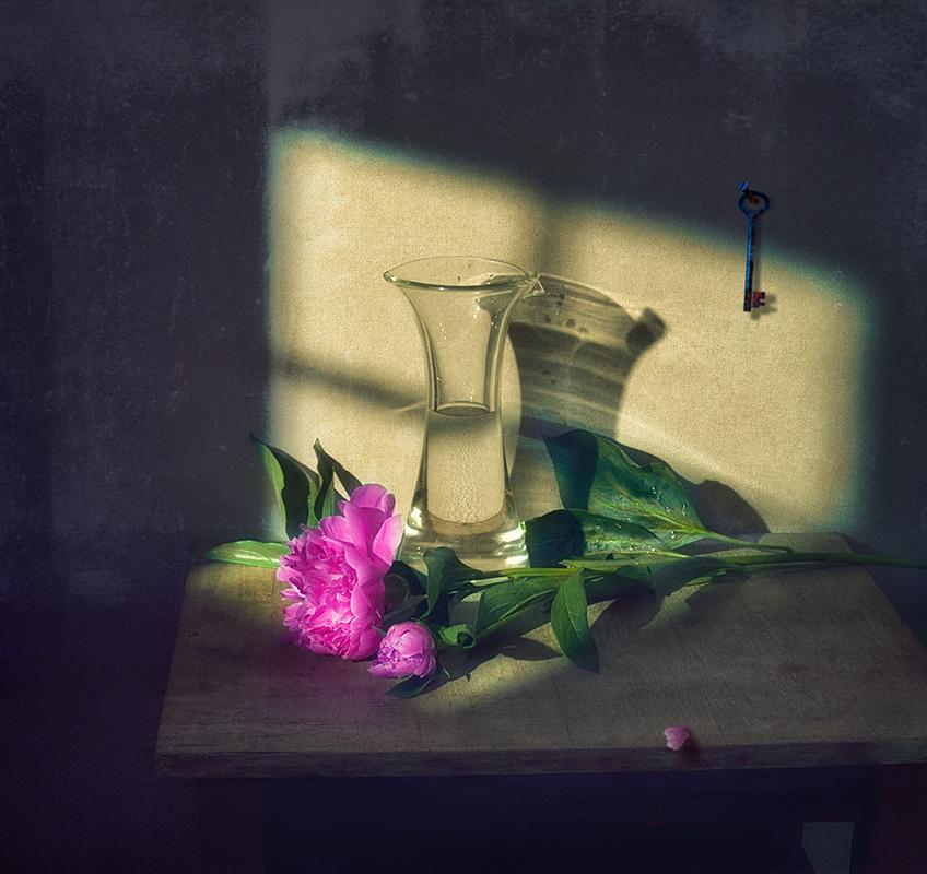 фотография натюрморт с разным освещением для