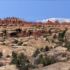 Canyonlands 14