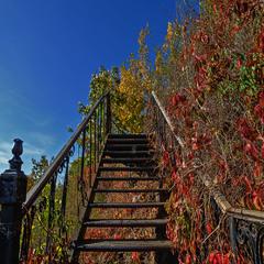 Сходами по осіні...