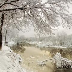 В краю снегов и туманов..