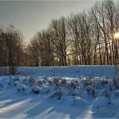Декабрьские тени