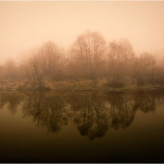 Туманный флиман