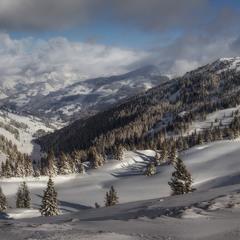 Панорама снежная