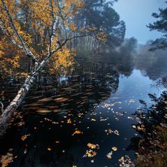 Осень рисует красоту...