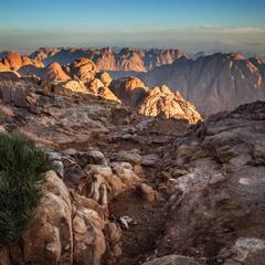 Яркие краски знойной пустыни...
